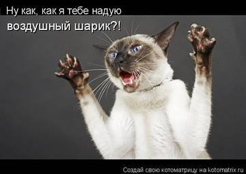 http://s1.uploads.ru/t/GA6ak.jpg