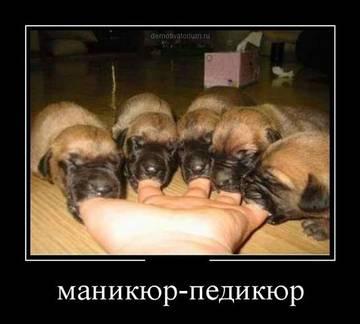 http://s1.uploads.ru/t/GvjyK.jpg