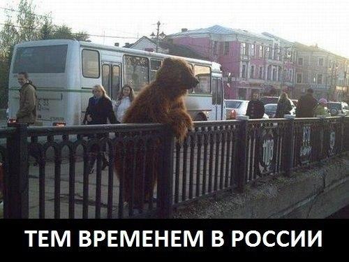 http://s1.uploads.ru/t/GypUx.jpg