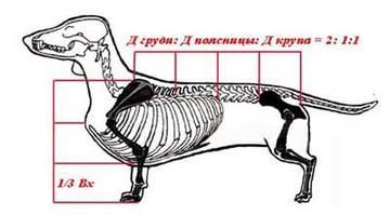 http://s1.uploads.ru/t/H8WLj.jpg