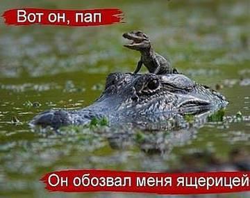http://s1.uploads.ru/t/H9LJc.jpg
