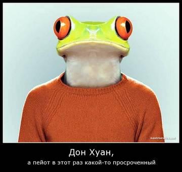 http://s1.uploads.ru/t/HI52T.jpg