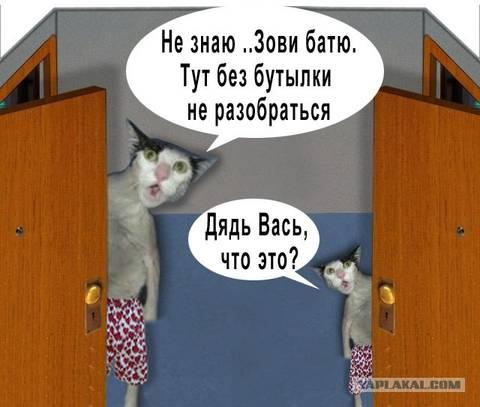 http://s1.uploads.ru/t/HbWyP.jpg