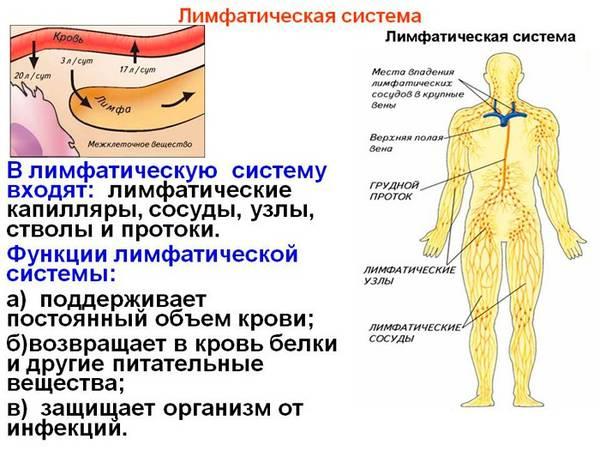 Самодиагностика