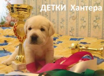 http://s1.uploads.ru/t/I7TtB.jpg