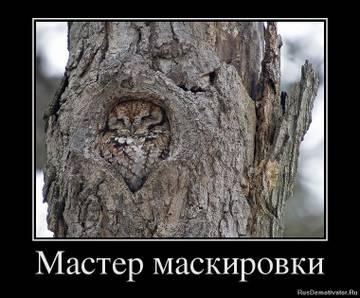 http://s1.uploads.ru/t/J9O2X.jpg