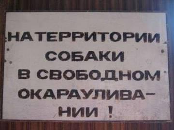 http://s1.uploads.ru/t/JBIeQ.jpg