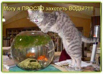 http://s1.uploads.ru/t/JCF42.jpg