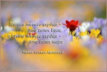 http://s1.uploads.ru/t/JE3ip.jpg