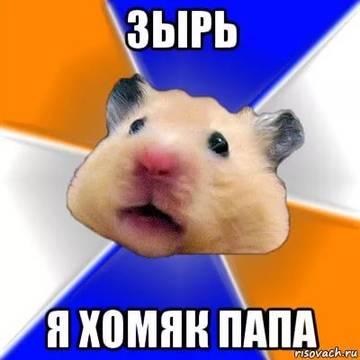 http://s1.uploads.ru/t/JXtU3.jpg