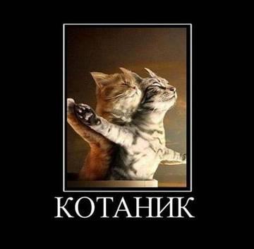 http://s1.uploads.ru/t/KSu8H.jpg