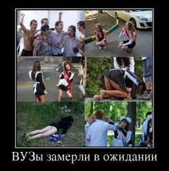http://s1.uploads.ru/t/KTUXj.jpg