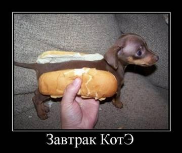 http://s1.uploads.ru/t/Ko0f5.jpg