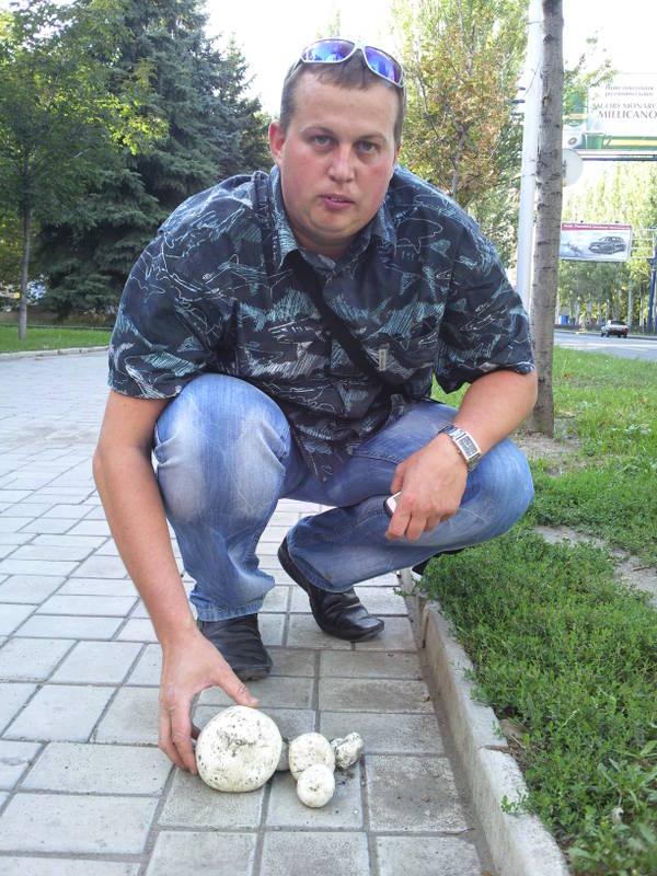 http://s1.uploads.ru/t/KzXAJ.jpg
