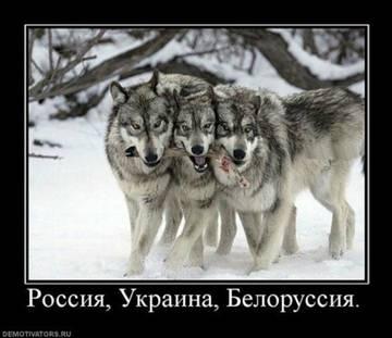 http://s1.uploads.ru/t/LNSB1.jpg