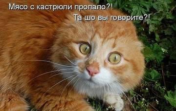 http://s1.uploads.ru/t/MH7St.jpg