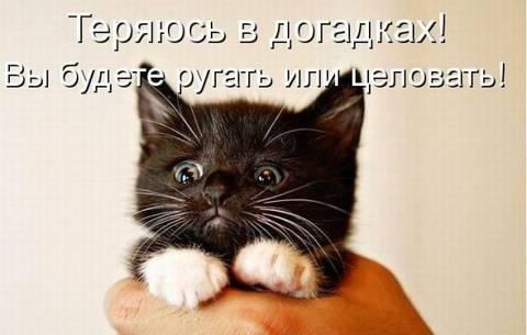 http://s1.uploads.ru/t/MKSmQ.jpg
