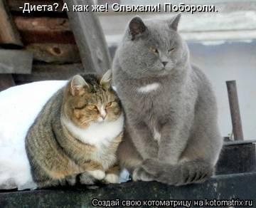 http://s1.uploads.ru/t/MNani.jpg