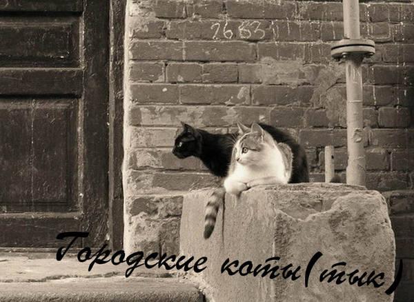 http://s1.uploads.ru/t/MWqlk.jpg