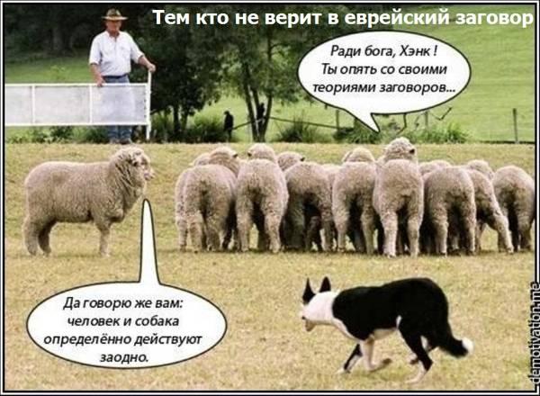 http://s1.uploads.ru/t/MbAHq.jpg