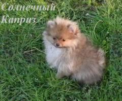 http://s1.uploads.ru/t/O9aHM.jpg