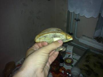 http://s1.uploads.ru/t/P4s7M.jpg