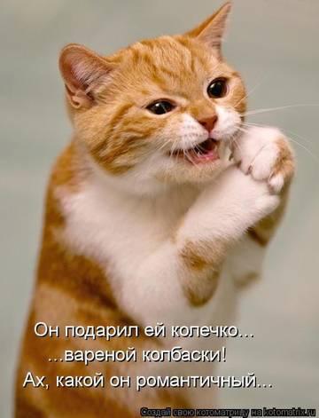http://s1.uploads.ru/t/PLNWX.jpg