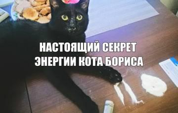 http://s1.uploads.ru/t/QFUPM.jpg