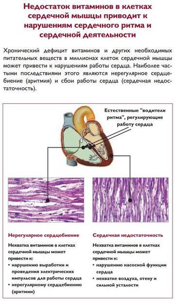 http://s1.uploads.ru/t/Qu0lT.jpg
