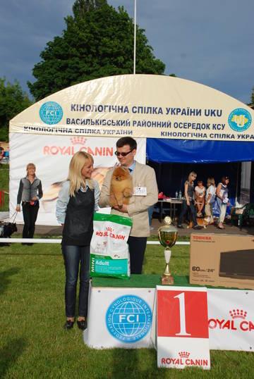 http://s1.uploads.ru/t/RiSpW.jpg