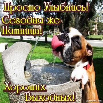 http://s1.uploads.ru/t/Rmbrq.jpg