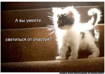http://s1.uploads.ru/t/RvSf5.jpg