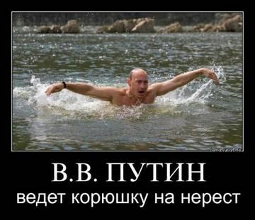 http://s1.uploads.ru/t/Rwv0L.jpg