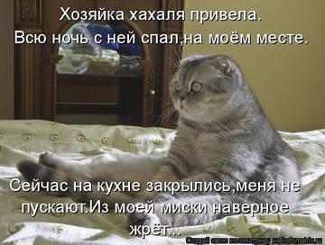 http://s1.uploads.ru/t/RzIBy.jpg