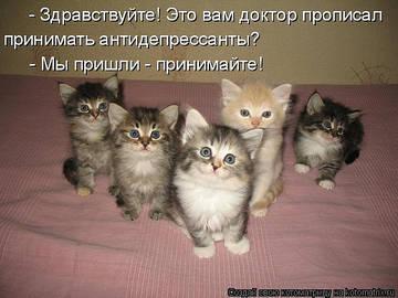 http://s1.uploads.ru/t/SvUDz.jpg