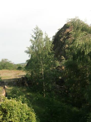 http://s1.uploads.ru/t/TDS0X.jpg