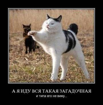 http://s1.uploads.ru/t/TaRBJ.jpg