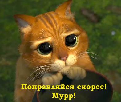 http://s1.uploads.ru/t/ThwIk.jpg