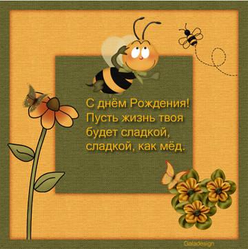 http://s1.uploads.ru/t/ToD5q.jpg
