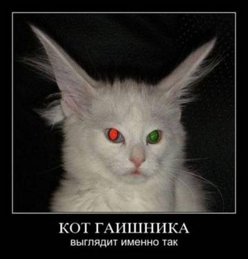 http://s1.uploads.ru/t/TvGIb.jpg