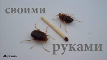 http://s1.uploads.ru/t/U5492.jpg