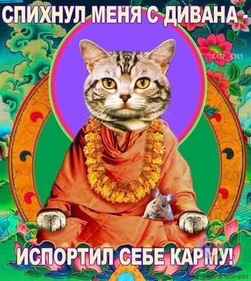 http://s1.uploads.ru/t/Ukemx.jpg