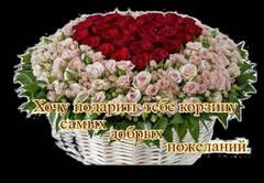 http://s1.uploads.ru/t/V2YxZ.jpg
