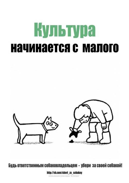 http://s1.uploads.ru/t/VXab5.jpg