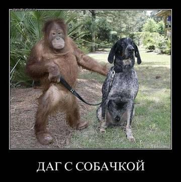 http://s1.uploads.ru/t/VxEmY.jpg