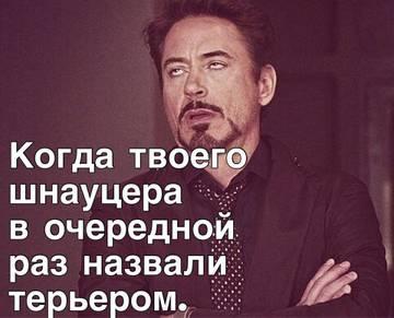 http://s1.uploads.ru/t/XZuLb.jpg