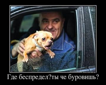 http://s1.uploads.ru/t/Xa8pC.jpg