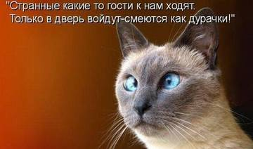 http://s1.uploads.ru/t/YGuyv.jpg
