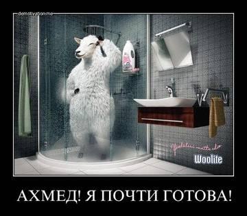 http://s1.uploads.ru/t/YMb2I.jpg