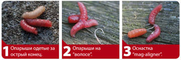 http://s1.uploads.ru/t/ajfHZ.jpg